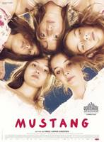 Mustang-Film-in-Glarus